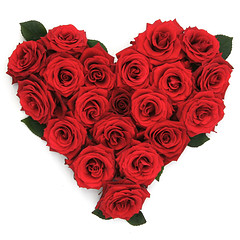 rose heart small